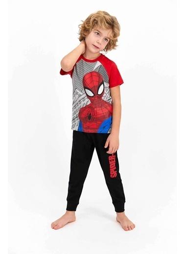Spider-Man Spider Man Lisanslı Krem Erkek Çocuk Kısa Kol Pijama Takımı Gri